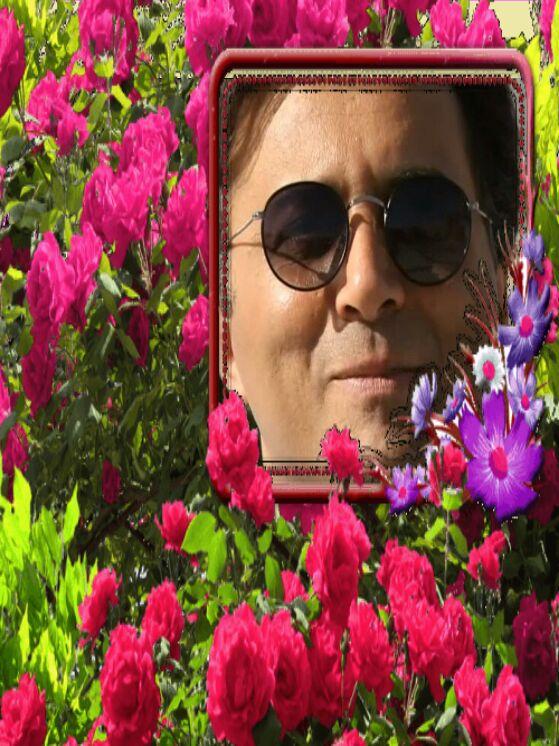 عکس های گرفته شده از برنامه  نشانی